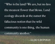 Who is the land - we are