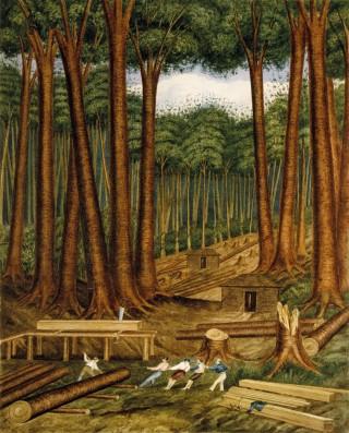 Kauri Harvesting Painting.jpg