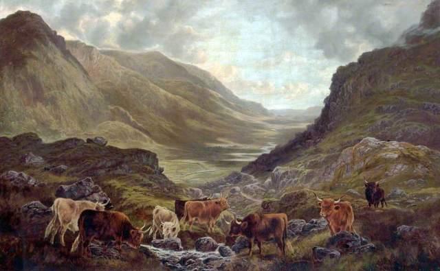 Highland Scotland w cattle.jpg