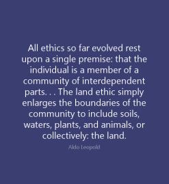 all-ethics-so-far-evolved-leopold