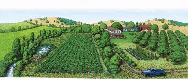 xerces_andrew polyculture.jpg